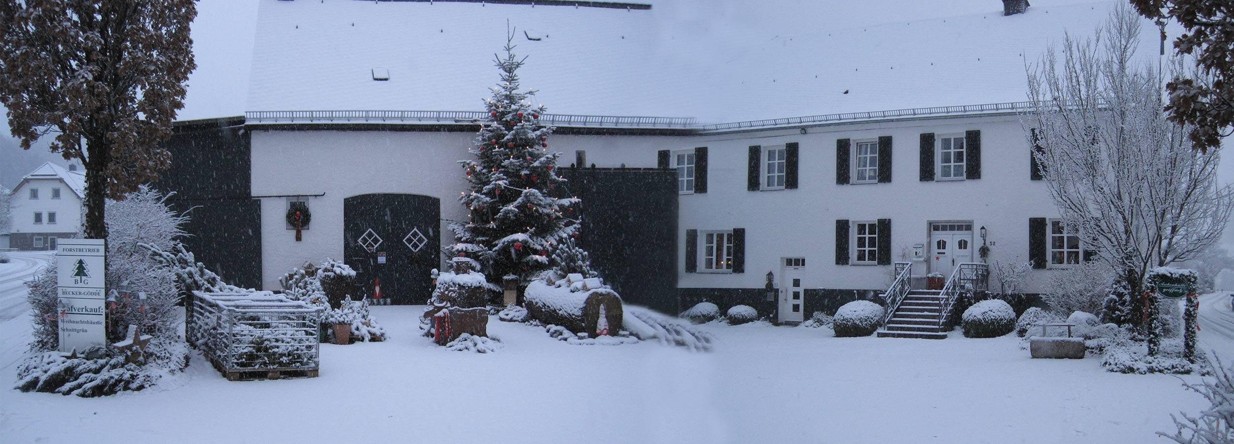 winter_titelbild_becke_goedde