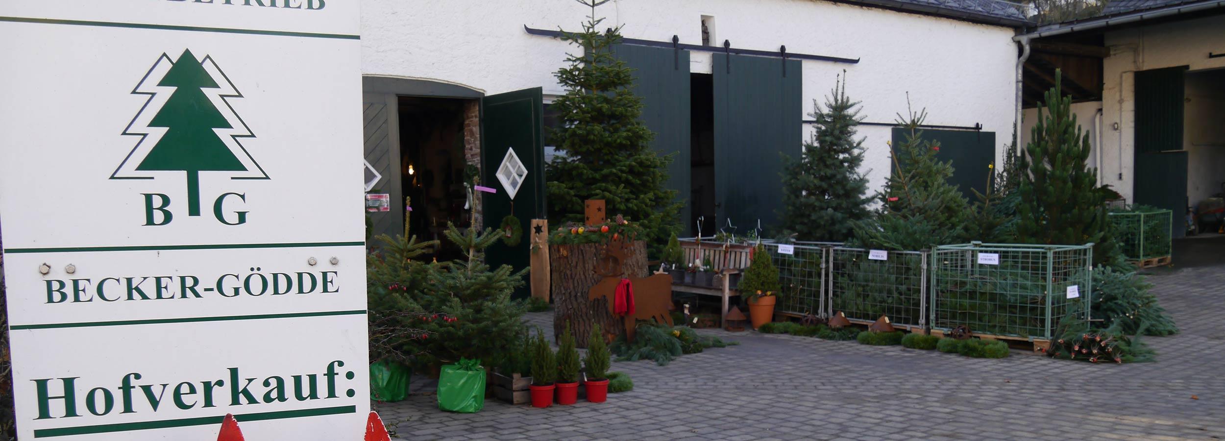 _winter_wunder_welt_weihnachtsbaeume_kaufen_001