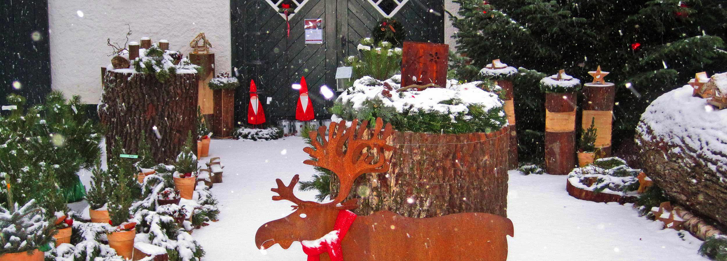 winter_titelbild_becke_goedde_002