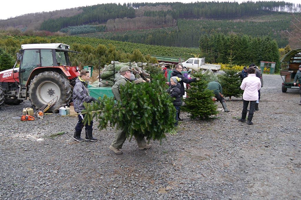 Weihnachtsbaum Selber Schlagen Sauerland.Weihnachtsstimmung Mit Den Liebsten Zusammen
